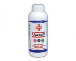 Disinfettante Battericida Fungicida Quanisol 10