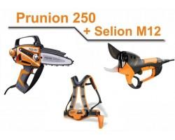 Kit Pellenc Prunion 250 + Selion M12