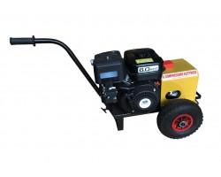 Generatore Energy a Scoppio Benzina 12V per Abbacchiatori